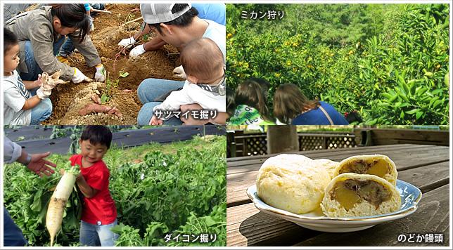 農業公園 信貴山のどか村