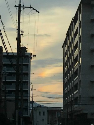 夕日で出来た彩雲