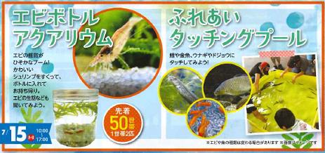 水の生き物たち