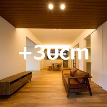 +30cm